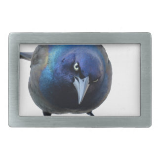 The Angry Grackle Rectangular Belt Buckle