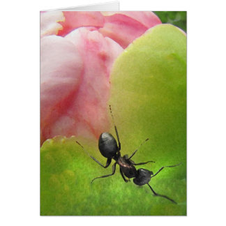 The Ant and the Peony Greeting Card