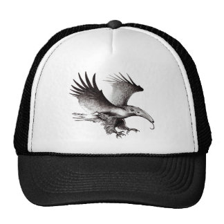 The Ant Eagle Hat