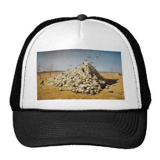 The Apotheosis of War Hats