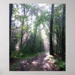 The Appalachian Trail, PA Poster