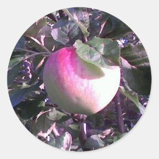The Apple Classic Round Sticker