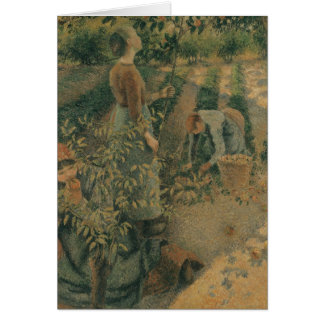 The Apple Pickers, 1886 Card