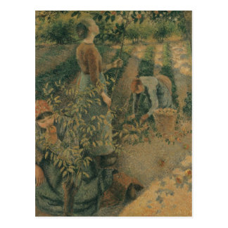 The Apple Pickers, 1886 Postcard