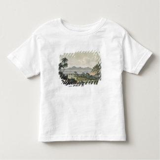 The aqueduct in Rio de Janeiro (colour engraving) T Shirt