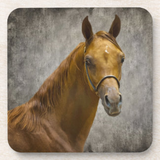 The Arabian Filly Drink Coaster