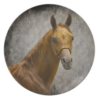 The Arabian Filly Plate