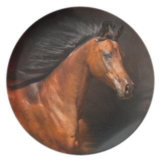 The Arabian Melamine Plate