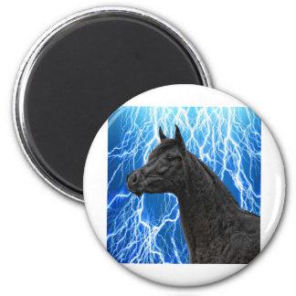 The Arabian Stallion Magnet