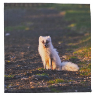 The Arctic fox Napkin