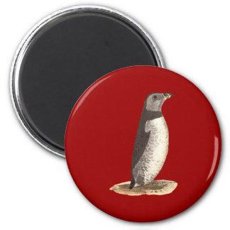 The Arctic Puffin(Mormon arcticus) 2 Inch Round Magnet