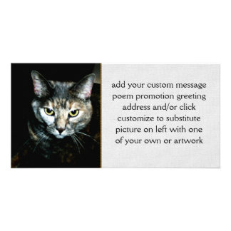 The Art Of Cat Photo Card