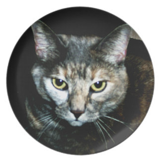The Art Of Cat Plate