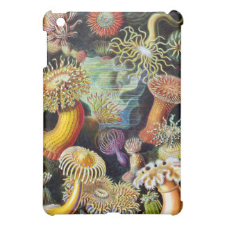 the Art of Nature by Ernst Haeckel iPad Mini Covers