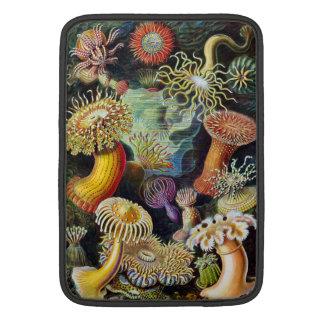the Art of Nature by Ernst Haeckel MacBook Sleeve