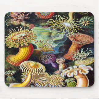 the Art of Nature by Ernst Haeckel Mousepad