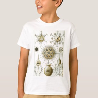 The Art of Nature by Ernst Haeckel T-Shirt