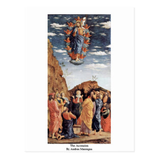 The Ascension By Andrea Mantegna Post Cards