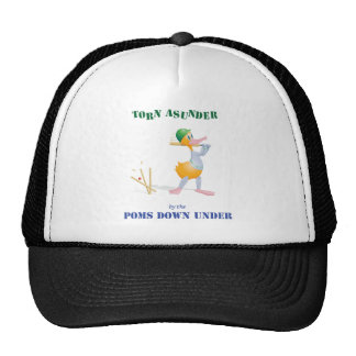 The Ashes 2010 Trucker Hat