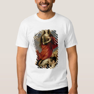 The Assumption of Mary Magdalene, 1636 Shirts