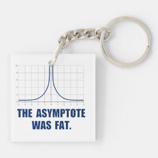 The Asymptote was Fat Double-Sided Square Acrylic Keychain