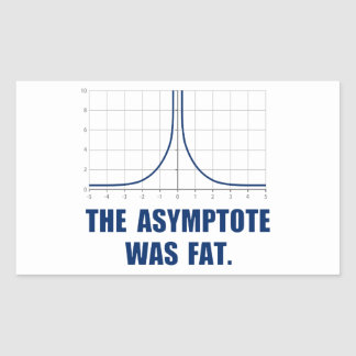 The Asymptote was Fat Rectangular Sticker