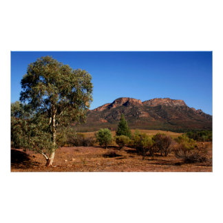 The Australian Outback Poster