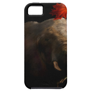 The Autumn of my life iPhone SE/5/5s Case