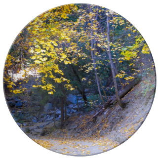 The Autumn Road Plate