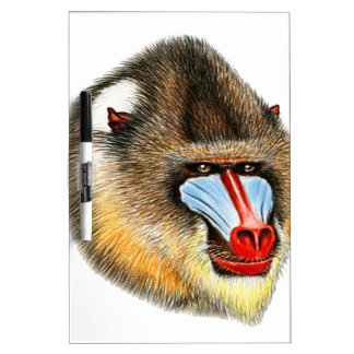 THE AWESOME MANDRILL DRY ERASE BOARD