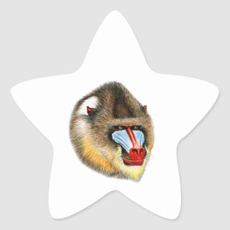 THE AWESOME MANDRILL STAR STICKER