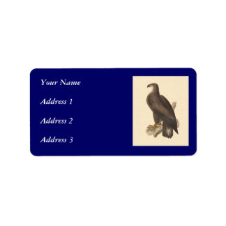 The Bald Eagle Haliaetos leucocephalus Custom Address Labels