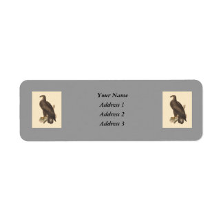 The Bald Eagle Haliaetos leucocephalus Custom Return Address Labels