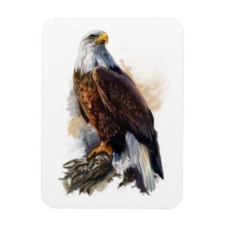 The bald eagle magnet