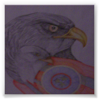 The Bald Eagles Poster