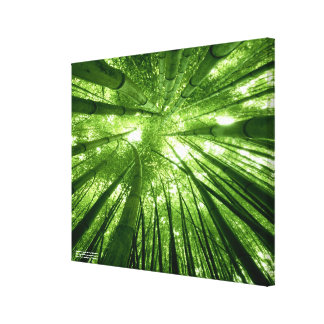 The bamboo forest canvas print