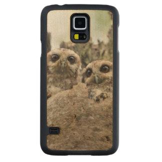 The Bare-legged Owl Or Cuban Screech Owl Carved® Maple Galaxy S5 Case