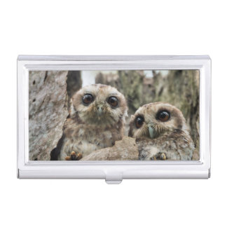 The Bare-legged Owl Or Cuban Screech Owl Case For Business Cards
