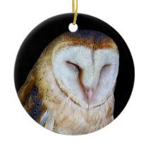 The Barn Owl Ceramic Ornament
