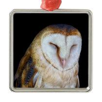 The Barn Owl Metal Ornament