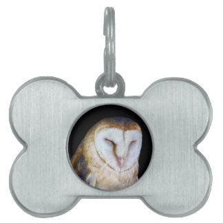 The Barn Owl Pet Name Tag