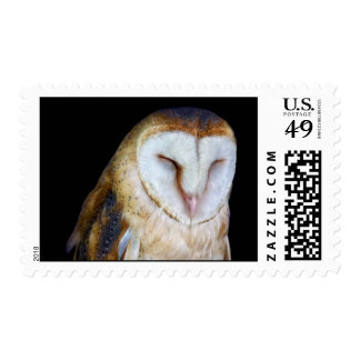 The Barn Owl Postage Stamp