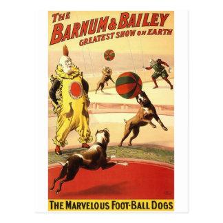 The Barnum Bailey greatest show on earth The mar Postcards