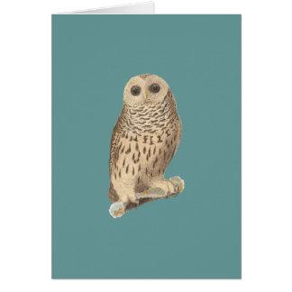 The Barred Owl(Ulula nebulosa) Greeting Card