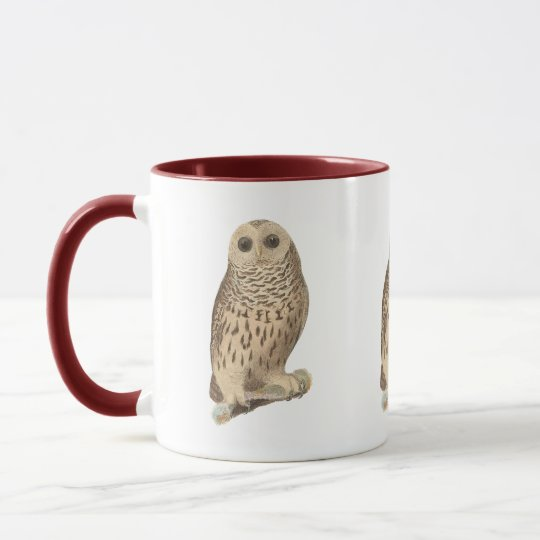The Barred Owl	(Ulula nebulosa) Mug