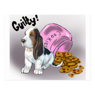 The Basset Hound Stole the cookies Postcard