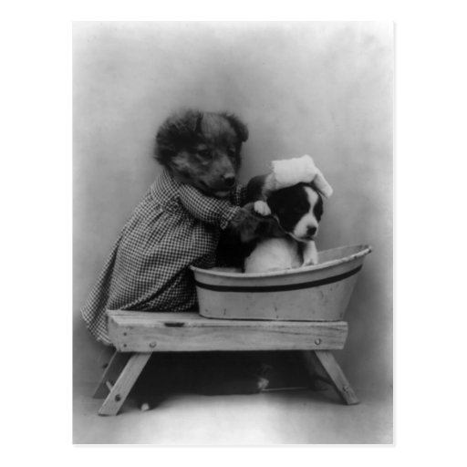 The Bath Postcard