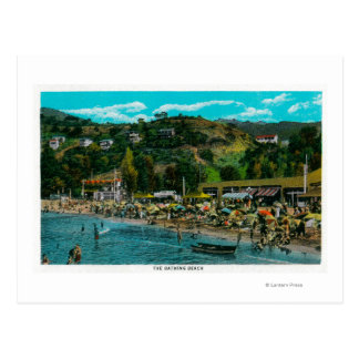 The Bathing Beach at Avalon, Catalina Island Postcard