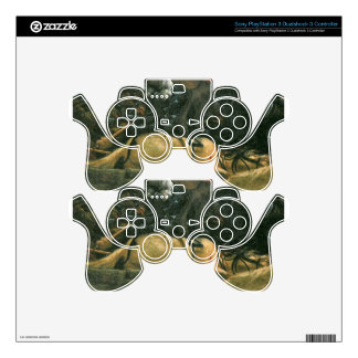 The battle of Issus(fragment) by Albrecht Altdorfe PS3 Controller Skin