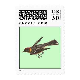 The Bay-breasted Warbler (Sylvicola castanea) Postage